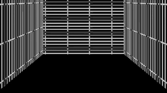 Schwarzes Gitter