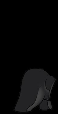 Adoptiere einen Frettchen Graues Beige