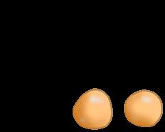 Adoptiere einen Hamster Toffee