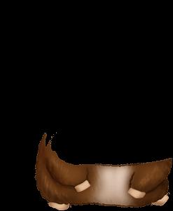 Adoptiere einen Hamster Europa