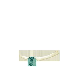 Adoptiere einen Maus Angora-Aprikose