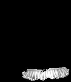 Maus Arc-en-Ciel
