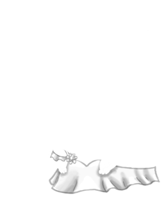 Maus Yeti
