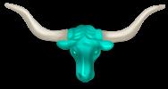 Bison Kopf
