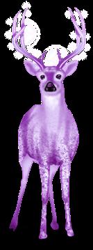 Schneerentier