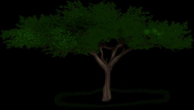 Löwenbaum