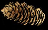 Brot Prise