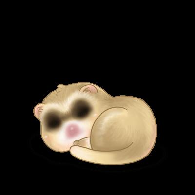 Adoptiere einen Frettchen Beige Brown