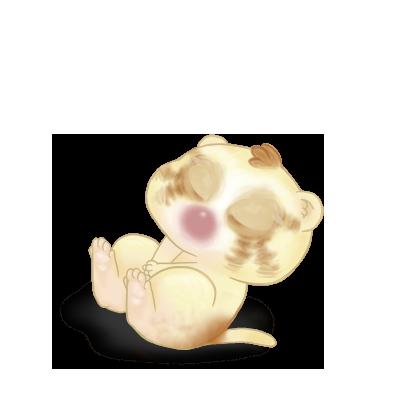 Adoptiere einen Frettchen Blondy