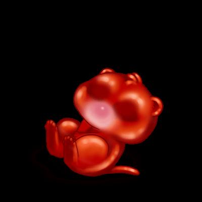 Adoptiere einen Frettchen Würzig