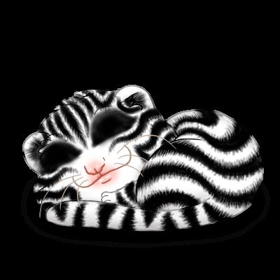 Adoptiere einen Frettchen Zebra