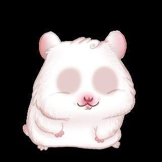 Adoptiere einen Hamster Albino