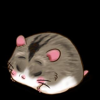Adoptiere einen Hamster Campbell