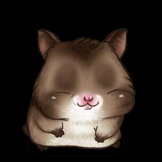 Adoptiere einen Hamster Bald-Hamster