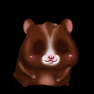 Adoptiere einen Hamster Choco