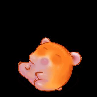 Adoptiere einen Hamster Hamster Kürbis