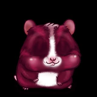 Adoptiere einen Hamster Fuchsie