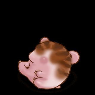 Marron rayé