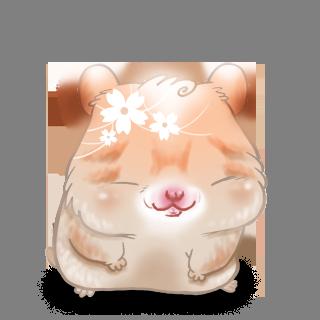 Adoptiere einen Hamster Frühling