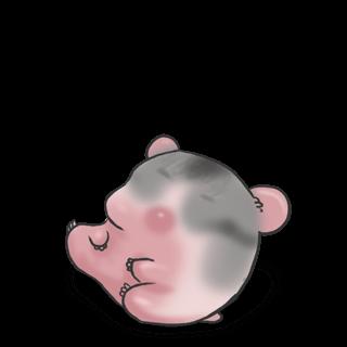 Adoptiere einen Hamster Russisch