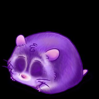 Adoptiere einen Hamster Liz