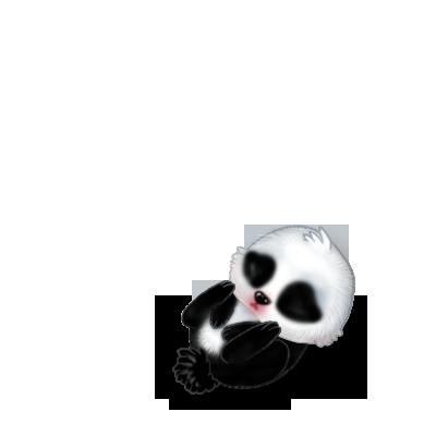 Adoptiere einen Kaninchen Panda