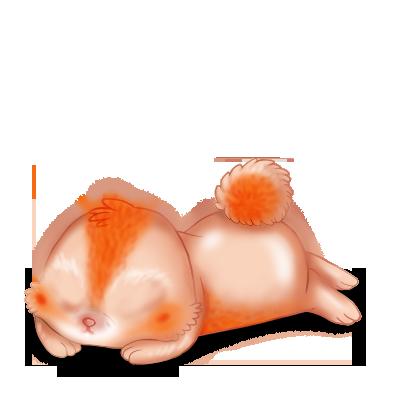 Adoptiere einen Kaninchen Poiledecarotte