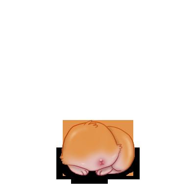 Adoptiere einen Kaninchen Roter Widder