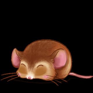 Maus Beige dorée