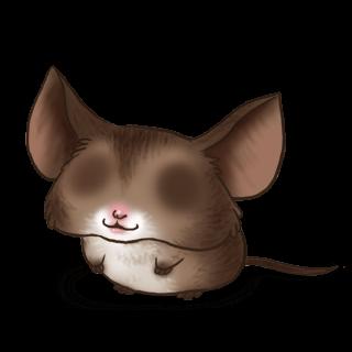 Adoptiere einen Maus Fledermaus