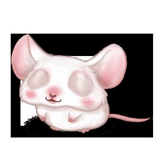 Maus Albinos