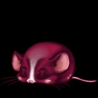 Maus Fuchsie