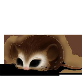 Adoptiere einen Maus Eule