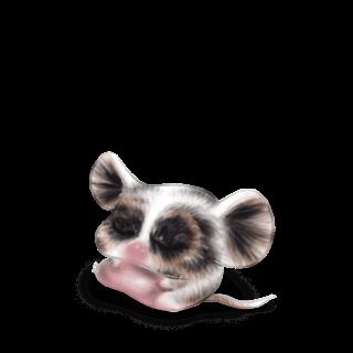 Adoptiere einen Maus Iona