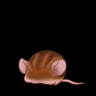 Adoptiere einen Maus Braun gestreift