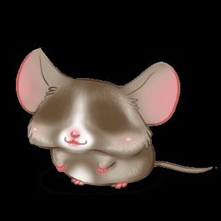 Adoptiere einen Maus Praline