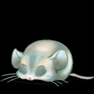 Adoptiere einen Maus Ronard