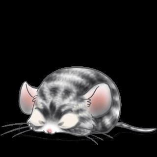 Adoptiere einen Maus Kratzen