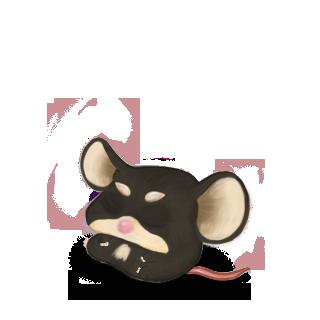 Adoptiere einen Maus Shiba Inu