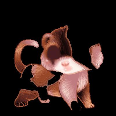 Adoptiere einen Frettchen Tinte