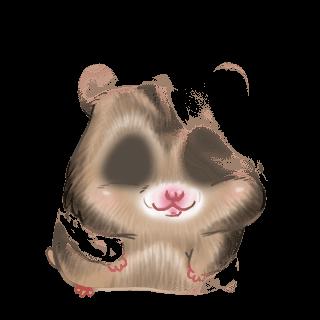 Adoptiere einen Hamster Arc-en-Ciel