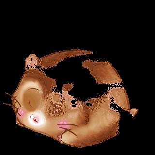 Adoptiere einen Hamster Karamell
