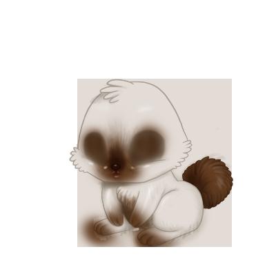 Adoptiere einen Kaninchen Weiß und Grau