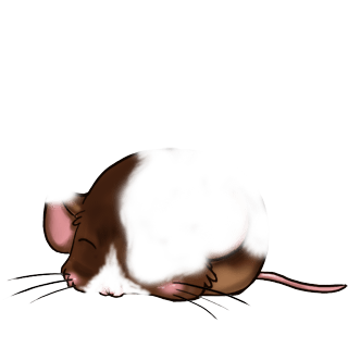 Adoptiere einen Maus Karamell