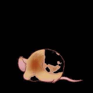 Adoptiere einen Maus Hausmaus