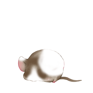 Adoptiere einen Maus Schwarz und weiß
