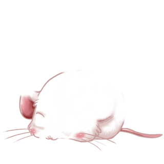Adoptiere einen Maus Flunsh
