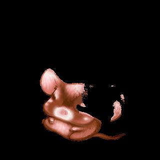 Adoptiere einen Maus Toffee