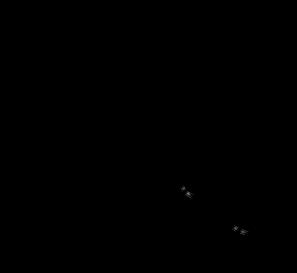 Adoptiere einen Frettchen Blauer Ara